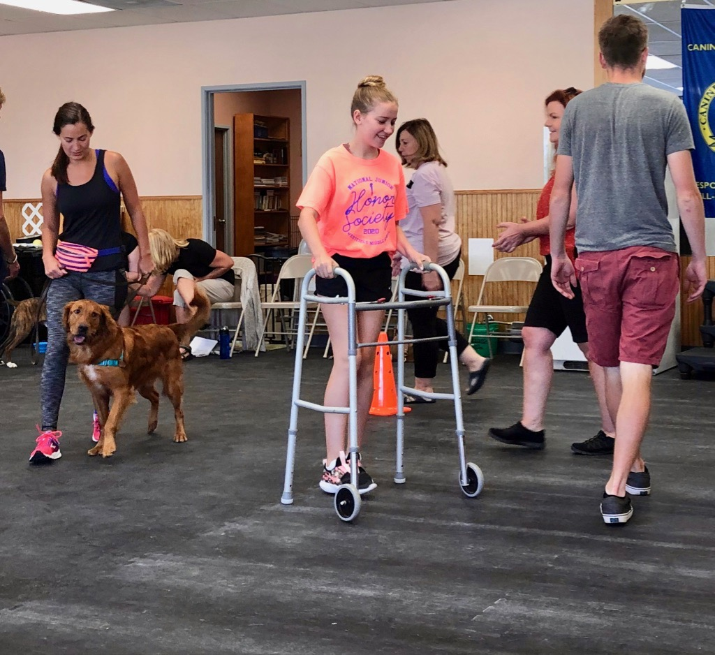 Register Therapy Dogs