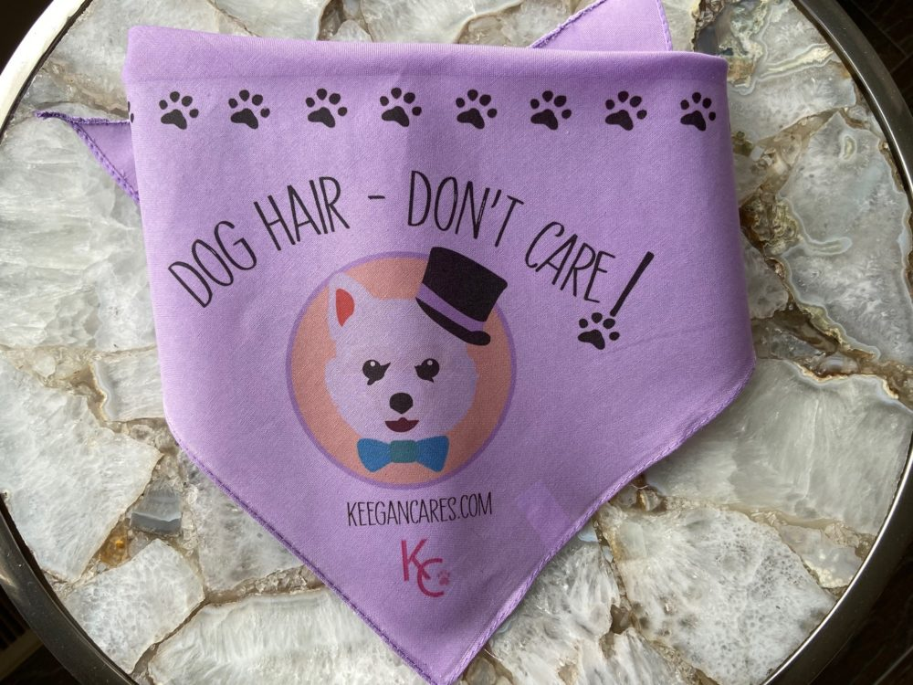 DOG HAIR – DON'T CARE